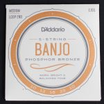 D'Addario EJ55 5-String Banjo Strings, Phosphor Bronze, Medium, 10-23