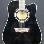 Washburn WD5 SCE 12B 12 String Electric Cutaway Guitar