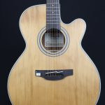Takamine TGN20CENS NEX Acoustic-Electric Guitar With Pickup Natural Finish